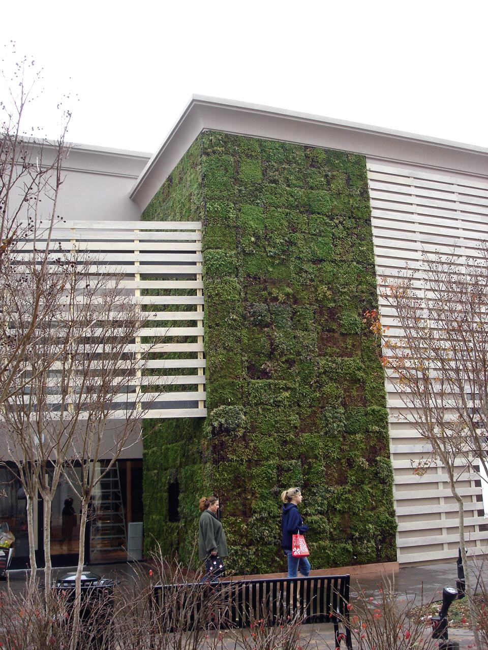 Anthropologie Green Wall Featured Image