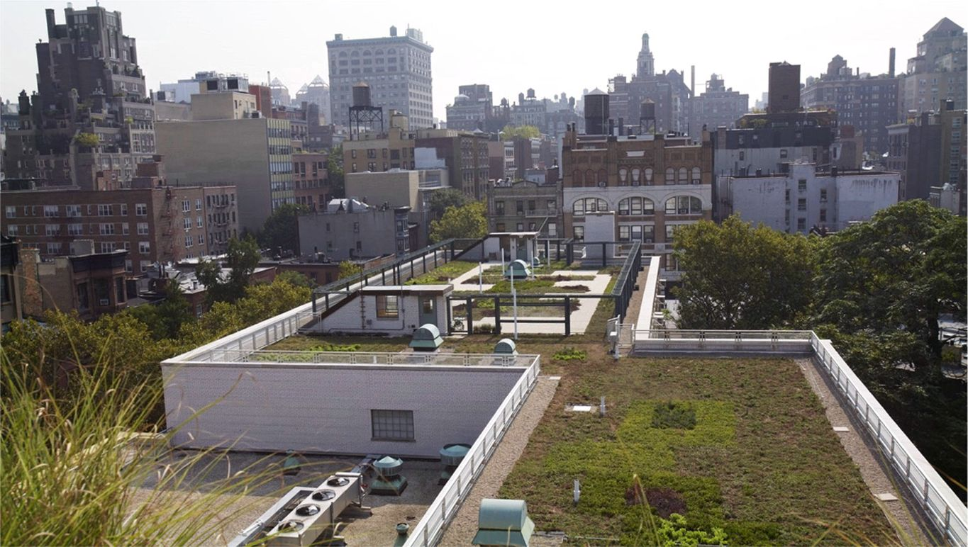 New York PS41 Greenroof Environmental Literacy Laboratory (GELL) Featured Image