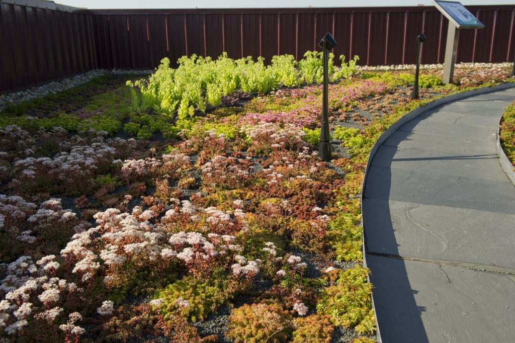The Roofing Industry S Growing Problem Greenroofs Com