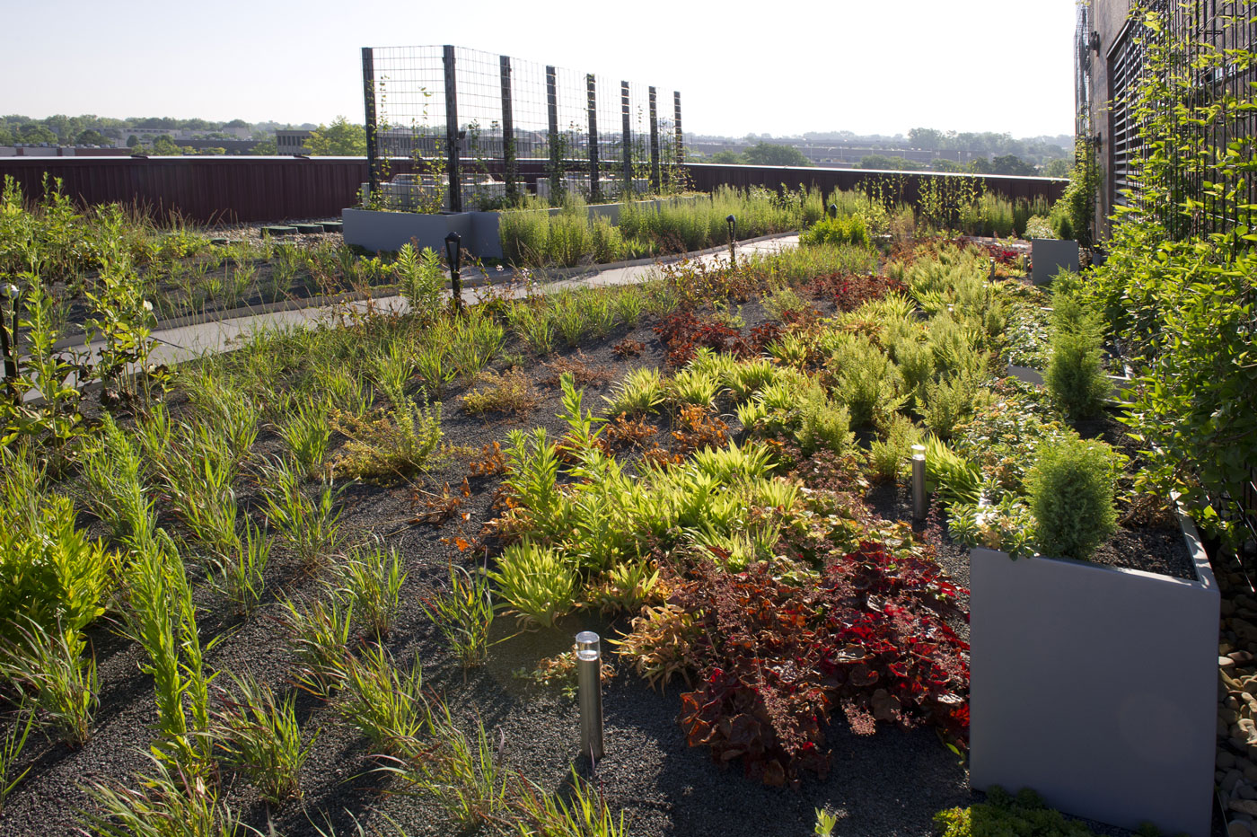 Tremco Incorporated Headquarters Greenroofs Com