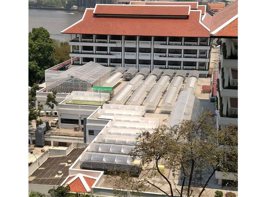 Anantara Riverside Bangkok Resort Rooftop Hydroponic Farm Featured Image
