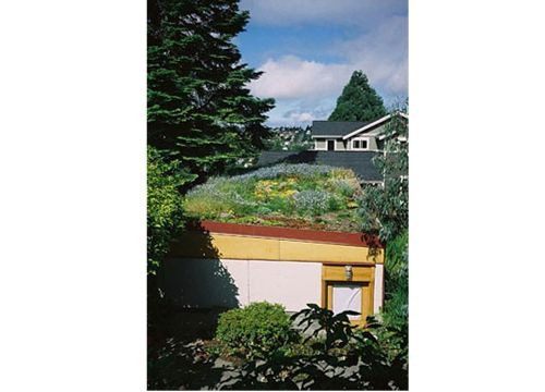 Private Seattle Green Roof Garage Featured Image