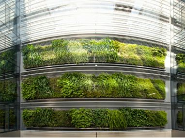 Britomart East Complex Green Walls Featured Image