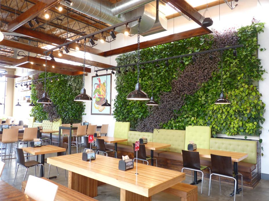 Brome Burgers & Shakes Green Walls Featured Image