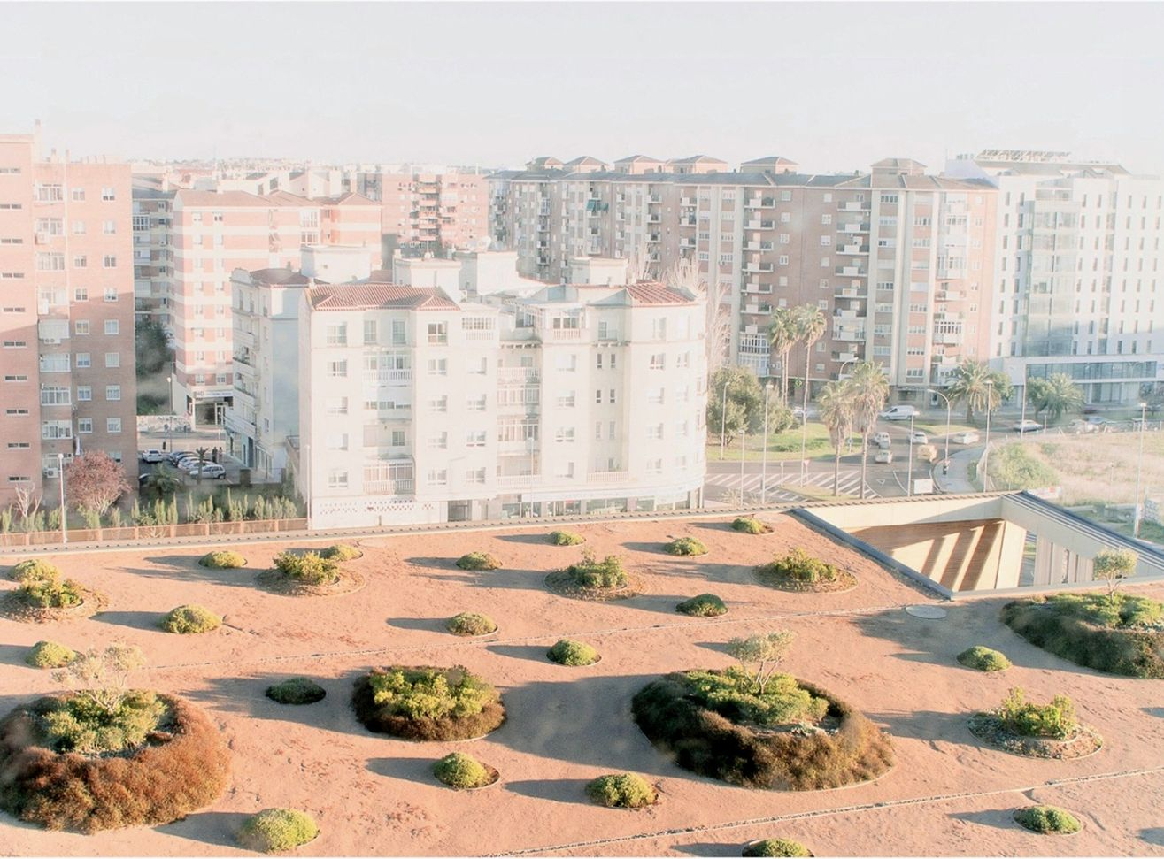 Caja Badajoz HQ Dehesa Landscape: Greenroof Cover and Gardens & Park Featured Image