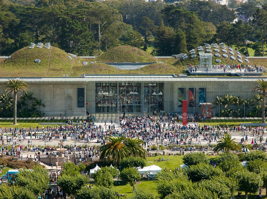 California Academy of Sciences (CAS) Living Roof Featured Image