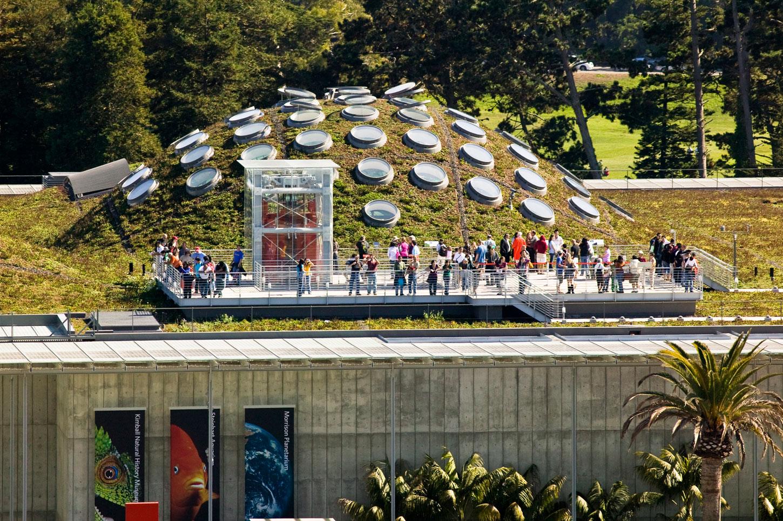 California Academy of Sciences (CAS) Living Roof - Greenroofs com