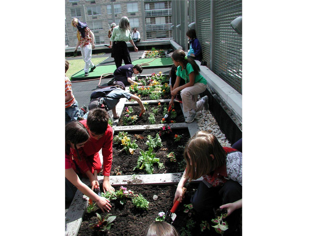 Calhoun School Green Roof Learning Center Greenroofs Com