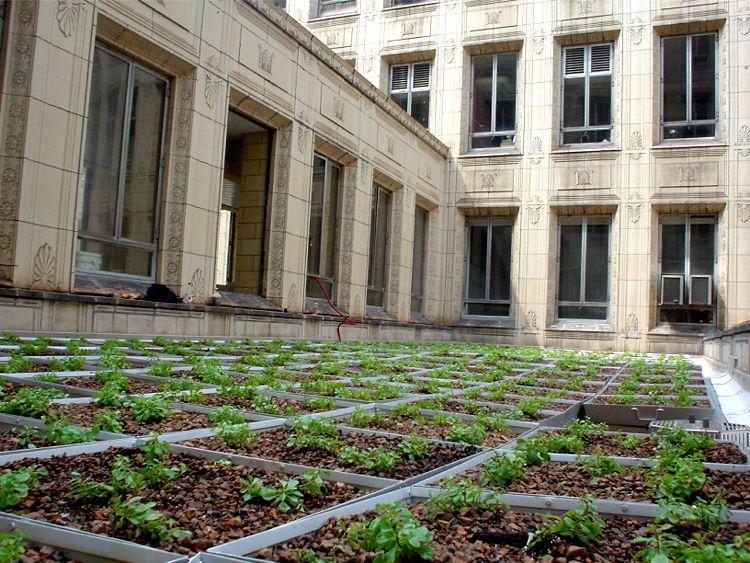 Carnegie Mellon University, Mellon Institute Featured Image