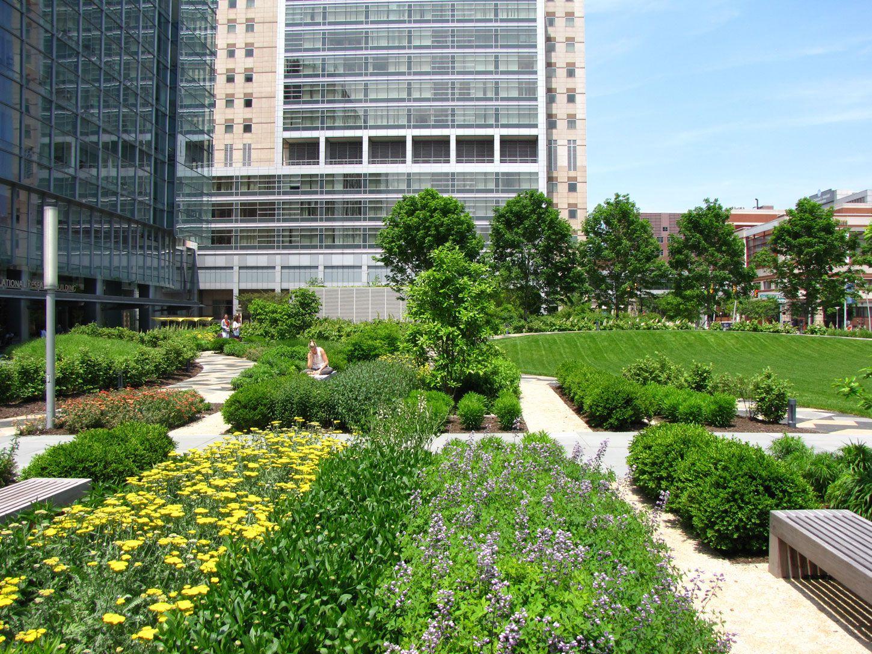 CHOP (Children's Hospital of Philadelphia) Buerger Center for