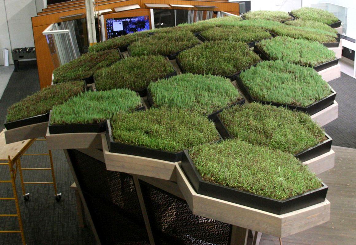 Dirtt Environmental Solutions Magog Meadows Interior