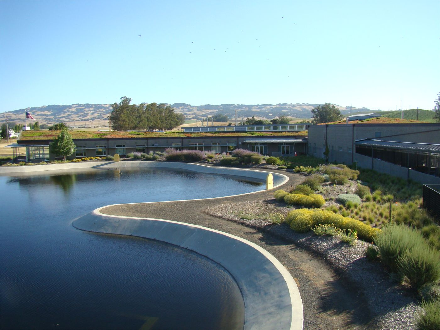 Ellis Creek Water Recycling Facility Greenroofs Com
