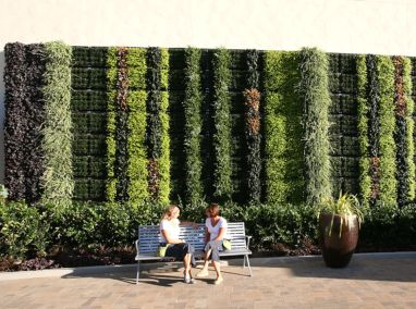 Fashion Valley Mall Living Wall Featured Image
