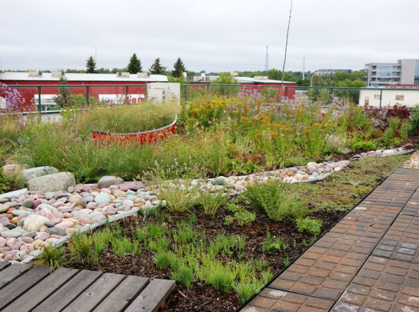 Berry Architecture Office Building Green Roof Greenroofs Com