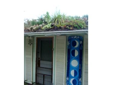 Florida Extensive Green Roof Greenroofs Com