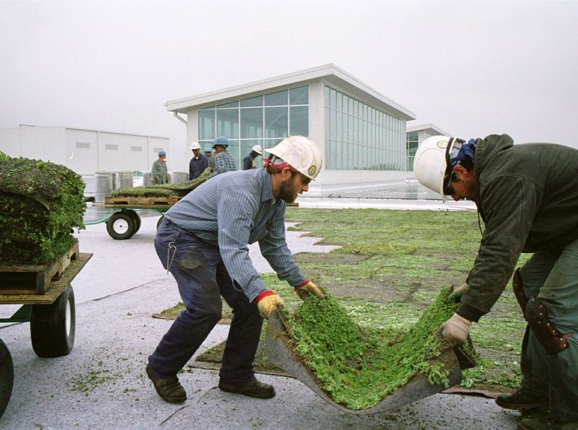 Ford Motor Company S River Rouge Truck Plant Greenroofs Com