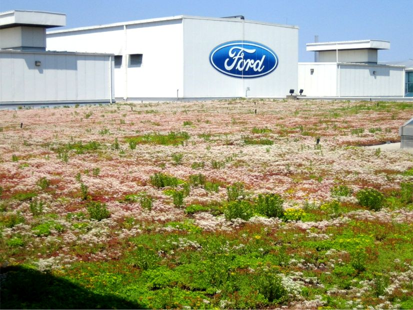 Ford Dearborn Mi >> Ford Motor Company S River Rouge Truck Plant Greenroofs Com