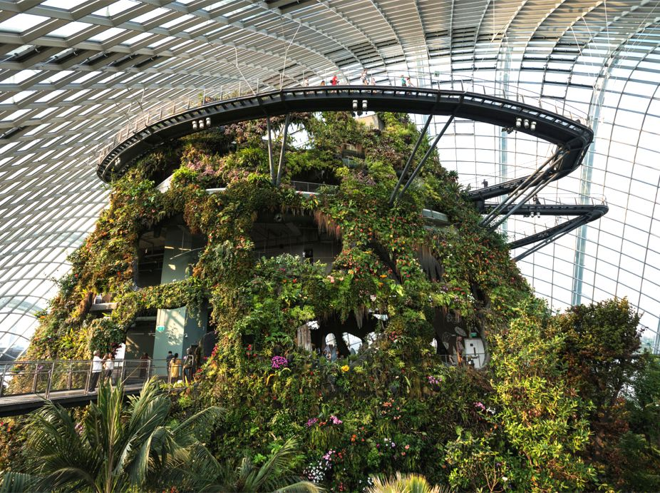 Gardens By The Bay Cloud Forest Conservatory S Cloud Mountain Greenroofs Com