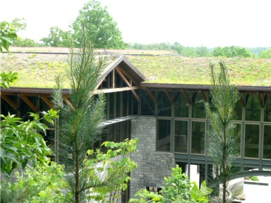 Gwinnett County Environmental & Heritage Center Featured Image