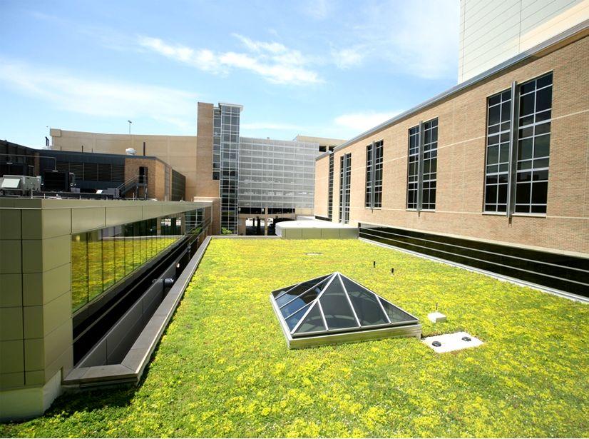 Hauenstein Neuroscience Center at Saint Mary's Featured Image