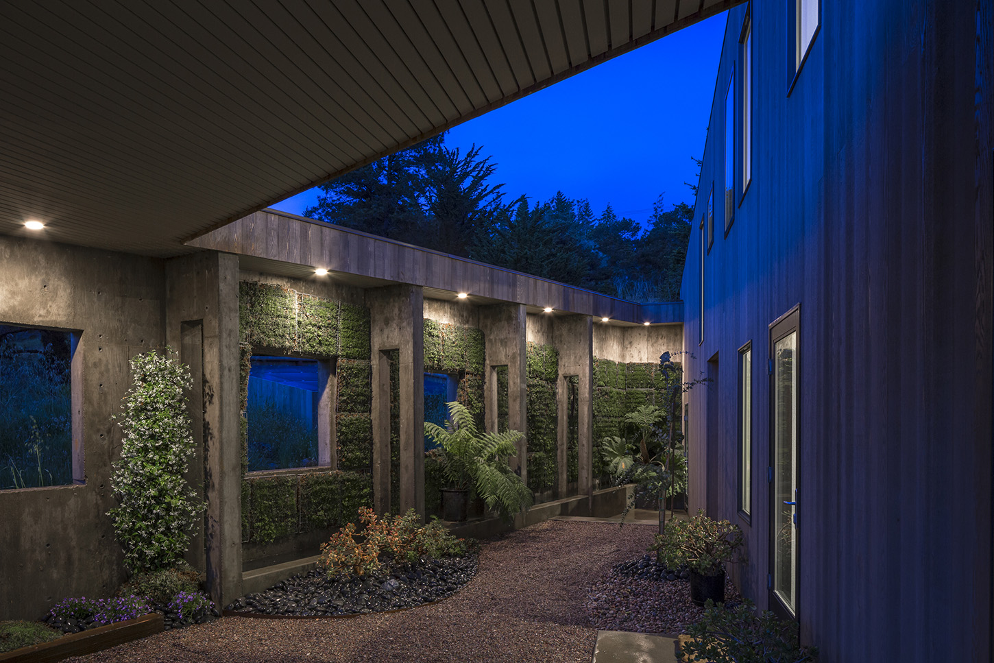 Hedgegate Living Roofs