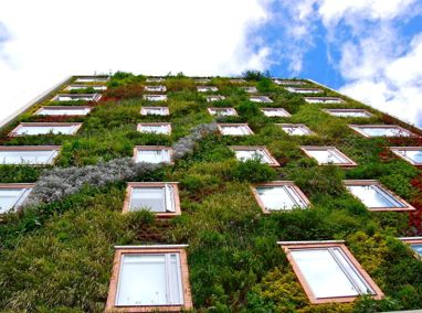 Hotel Gaia-B3 Vertical Ecosystem Featured Image