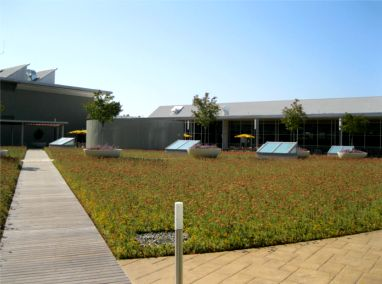 Hewlett Packard Building 4A Roof & Patio Upgrade Featured Image