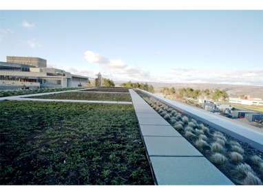 Ithaca College – Dorothy D. and Roy H. Park Center for Sustainable Enterprise Featured Image