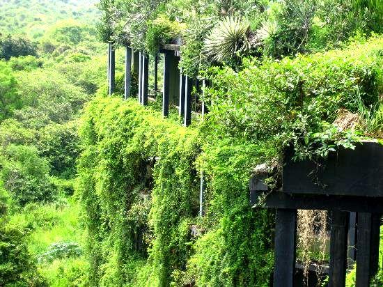 Kandalama Hotel Greenroofs Com