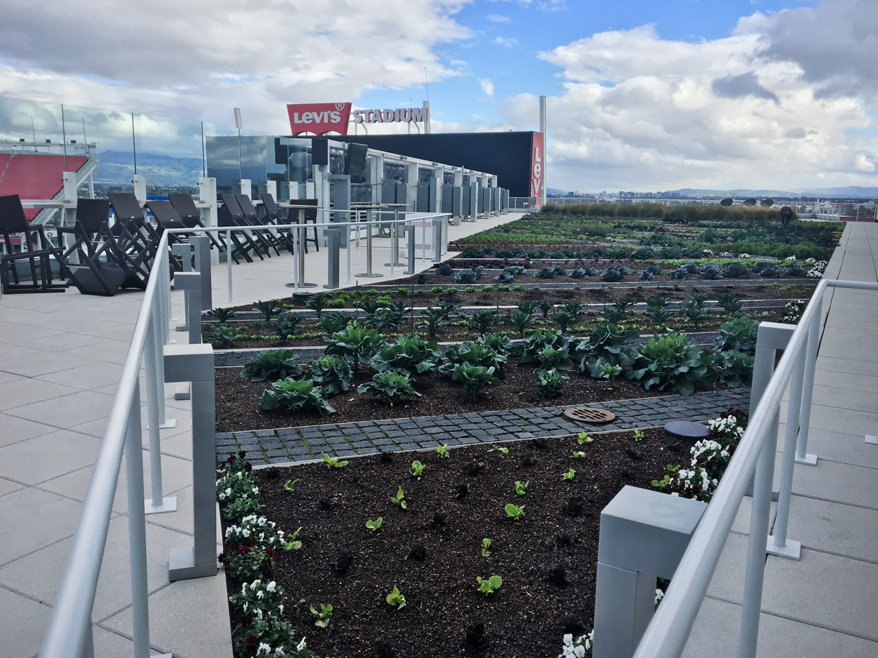 Levi's Stadium Greenroof & Rooftop Farm