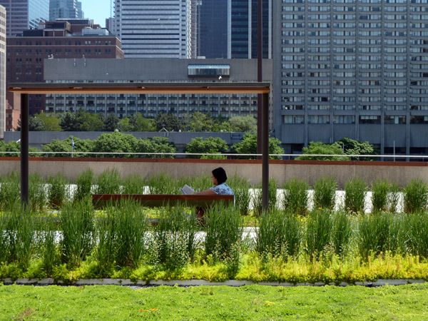 Nathan Phillips Square Toronto City Hall Podium Green Roof