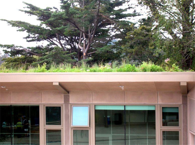 Nueva School, Hillside Learning Complex Featured Image