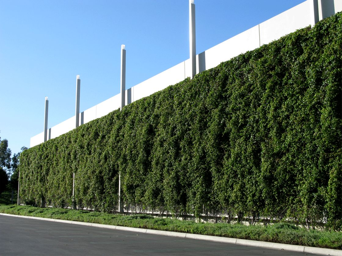 One Premier Place Greenroofs Com