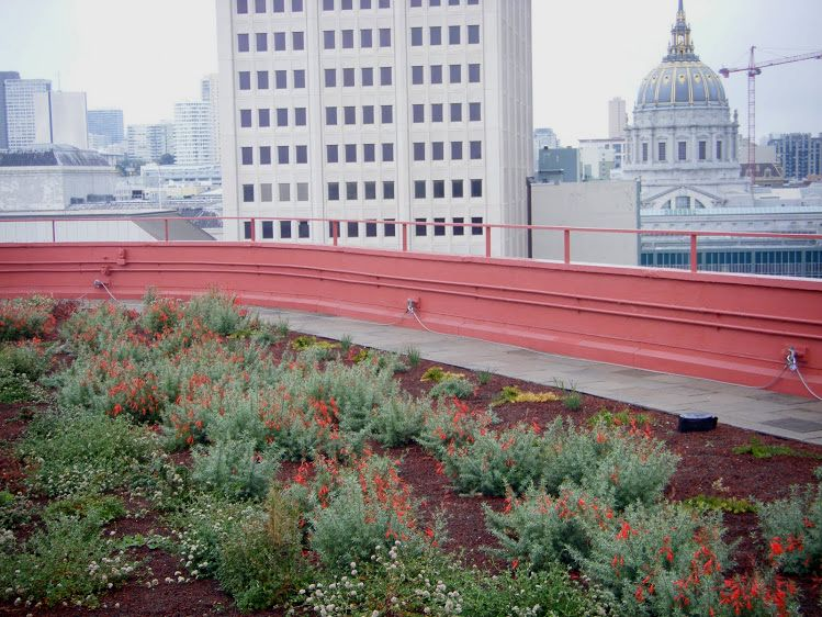 One South Van Ness Ave Greenroofs Com