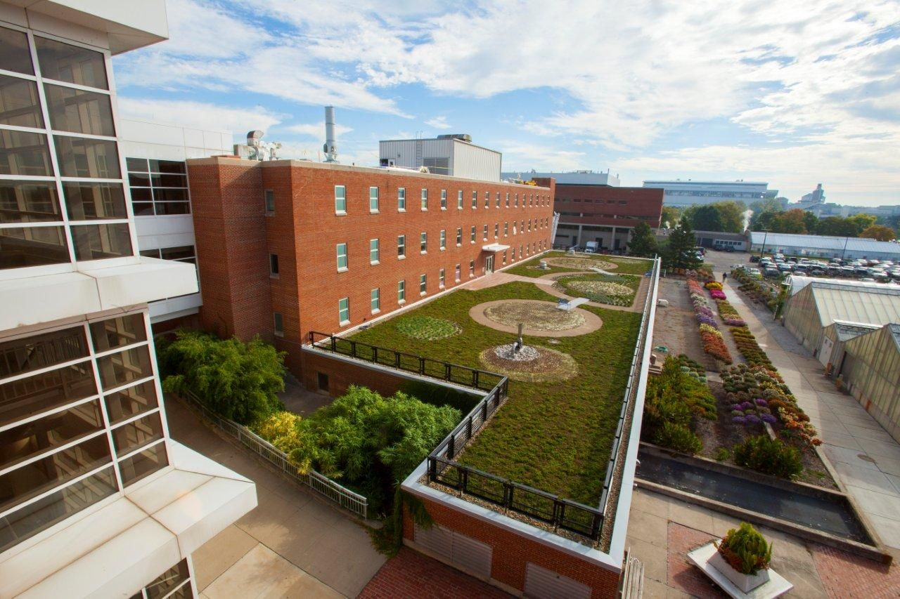 The Ohio State University Osu Green Roof At Howlett Hall