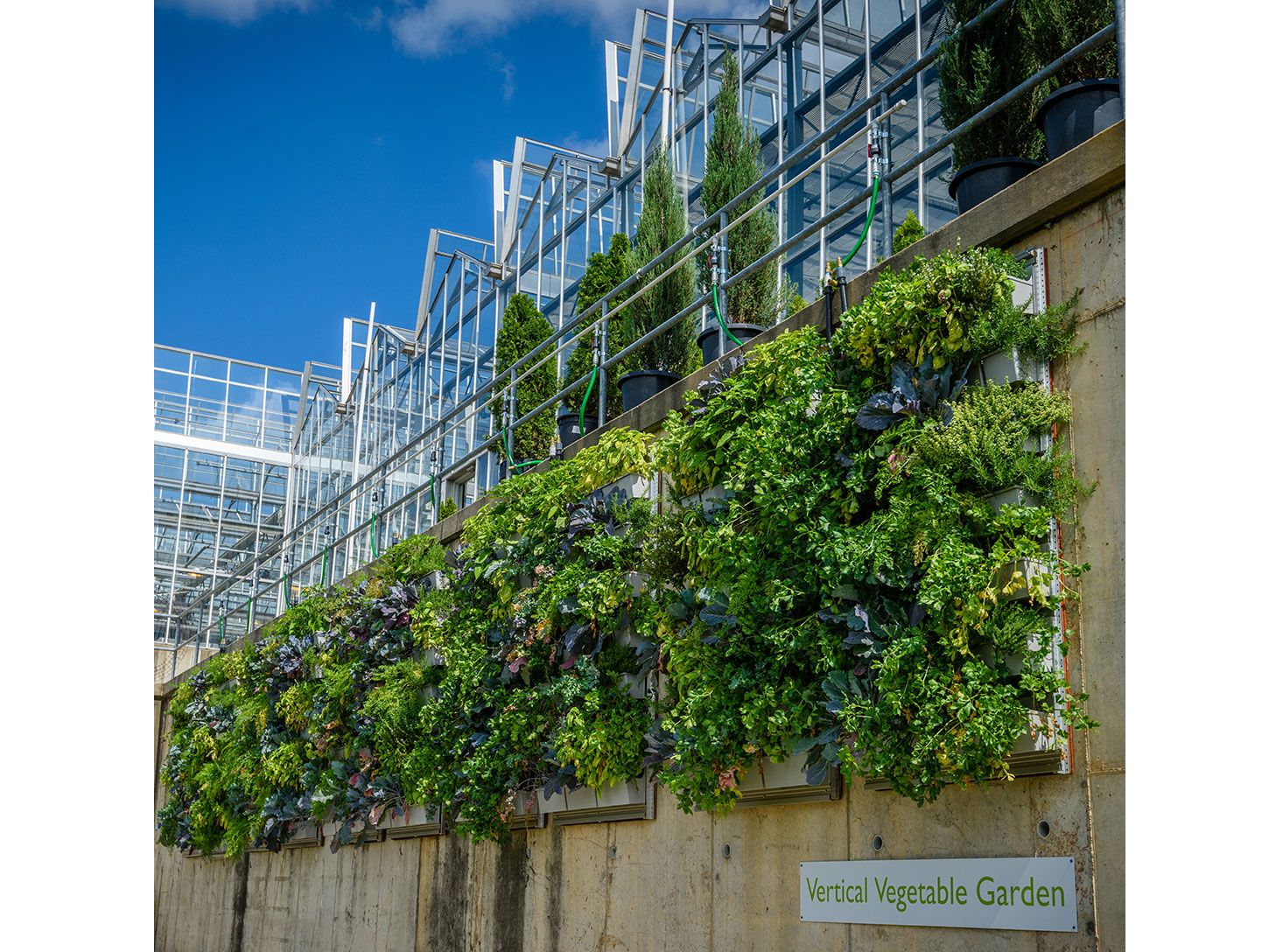 Phipps Conservatory Production Greenhouse Living Walls Featured Image