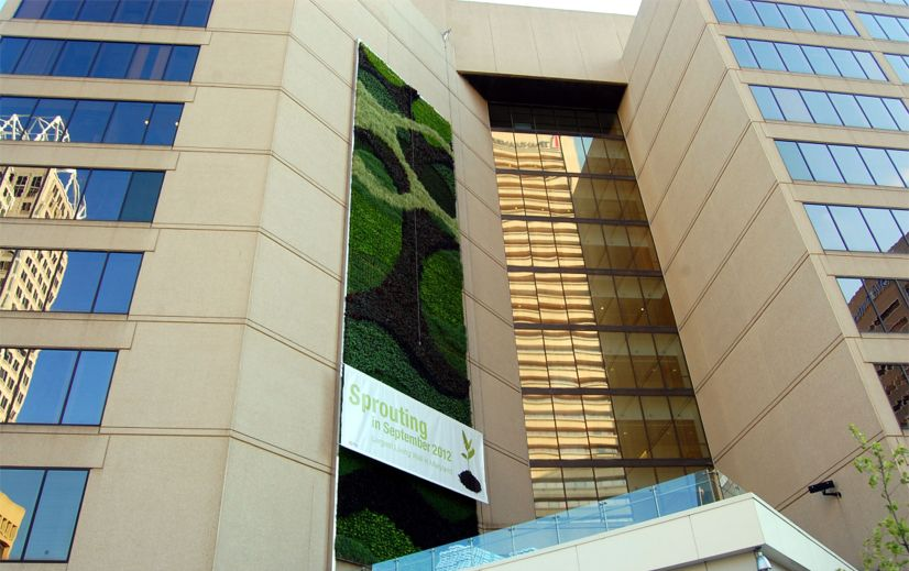 PNC Bank Baltimore Green Wall - Greenroofs com