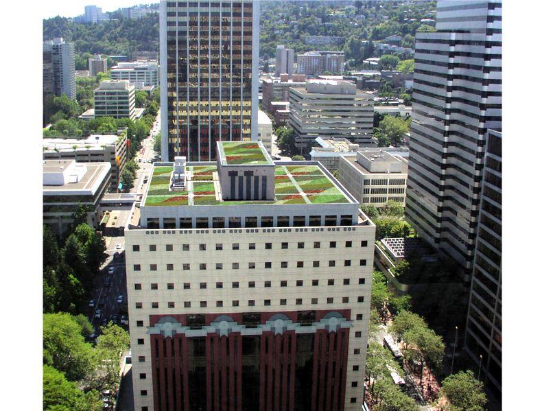 The Portland Building Greenroofs Com