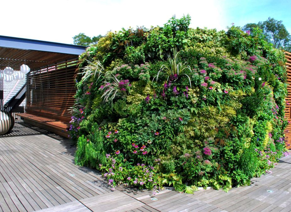 Private Roof Terrace and Greenwall Landscape Design, Lawrence, NY Featured Image
