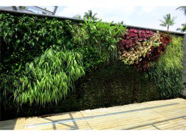 Private Kona Coast Line, HI Residence Featured Image