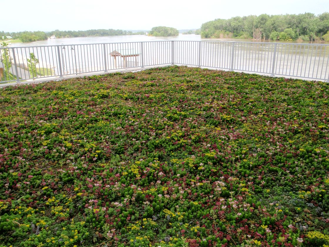 Riverfront Place Condominiums Greenroofs Com