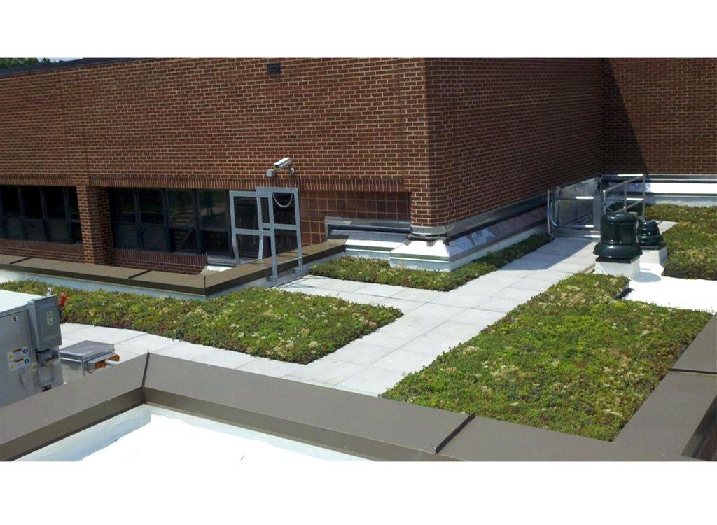 Rolling Terrace Elementary School Greenroofs Com
