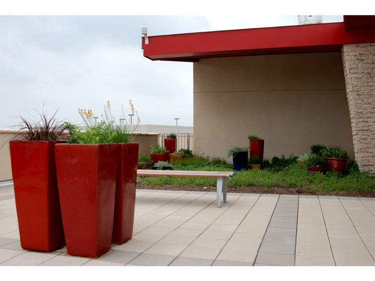 Ronald McDonald House of Austin Featured Image