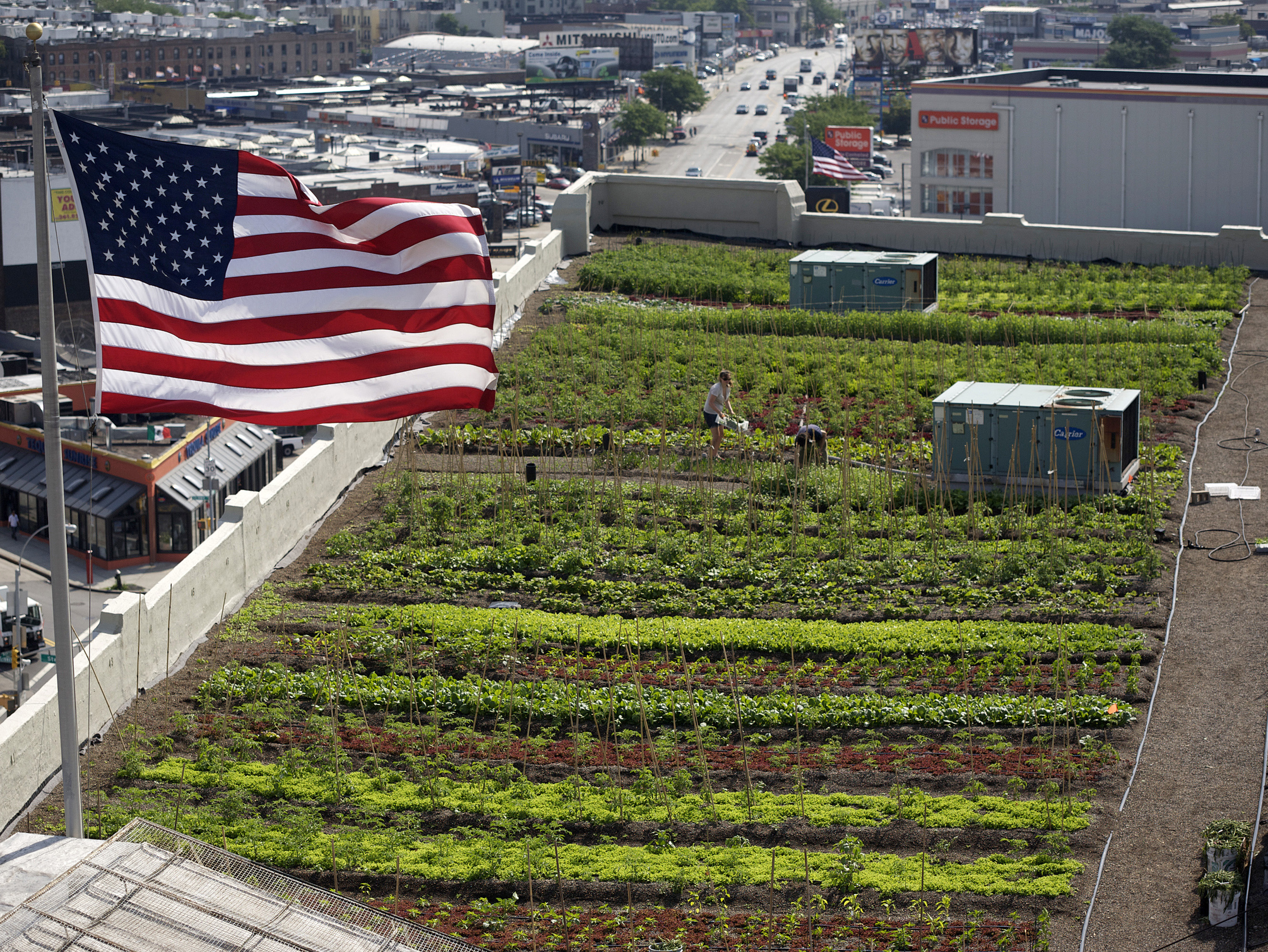 Brooklyn Grange Rooftop Farm (Flagship Farm)  #1 at Standard Motor Products Featured Image