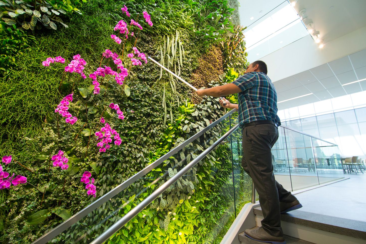 Rutgers university nj institute for food nutrition and - How to make a living wall ...