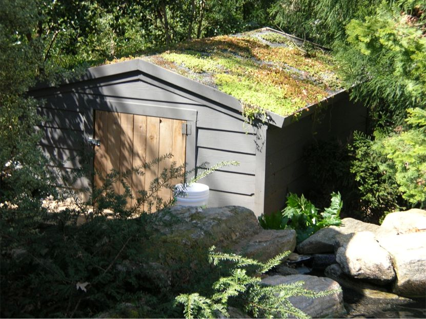 Saul Residence Pool Pump Shed Featured Image