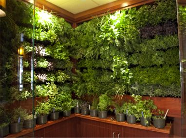 Bon Seasons 52 Santa Monica Blvd Living Walls Featured Image