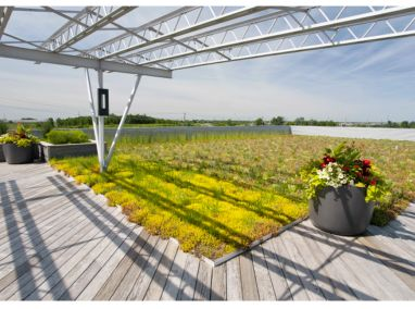 Sebert Landscaping Corporate Office Featured Image