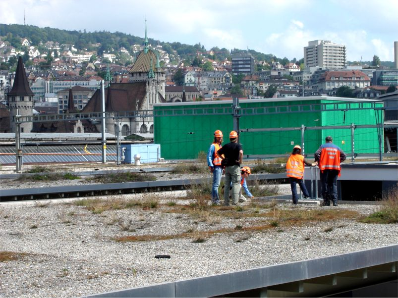 Sihlpost Platform at Zurich Main Railway Station Featured Image