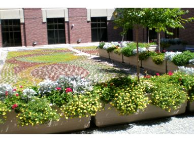 St Luke S Magic Valley Hospital Greenroofs Com